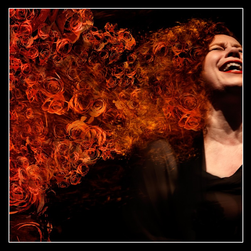 "Sarah Jane Morris ""Sweet Little Mystery"""